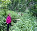 Nagy körtúra a Szlovák Paradicsomban